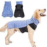 Rantow Dog Apparel & Accessories