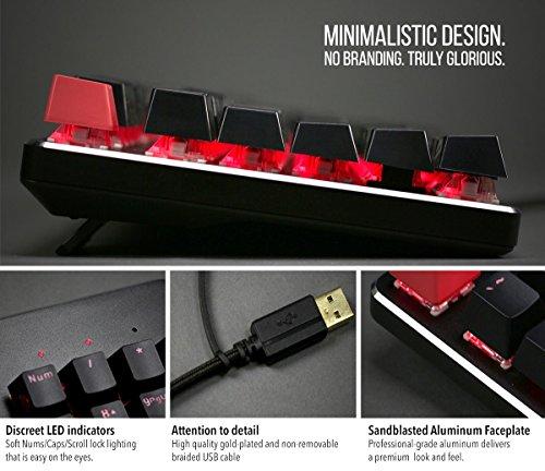 Glorious GMMK Modular Mechanical Gaming Keyboard - TENKEYLESS (87 Key) - RGB LED Backlit, Brown Switches, Hot Swap Switches (GMMK-TKL-BRN)