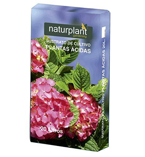 NATURPLANT Sustrato para Planta Ácidas o Acidófilas, Azalea, Camelia, Hortensia, Erica, Rododendros, PH Entre 5 y 6