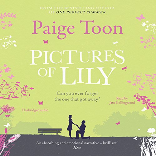 Pictures of Lily audiobook cover art