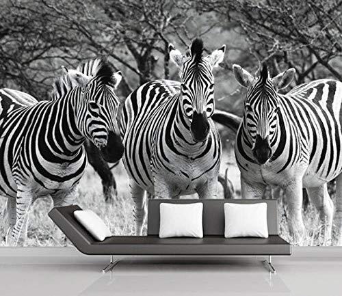 3D vliesbehang fotobehang abstract zebra-schilderij 3D Het zwart-wit-3 wandbehang voor woonkamer sofa background 350*245 350 x 245 cm.