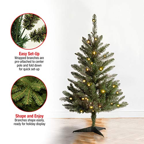 National Tree 15 Foot Kingswood Fir Pencil Tree, 3 ft