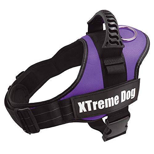 Arquivet Arnés Xtreme Dog Lila - Talla:XL/80-110cm
