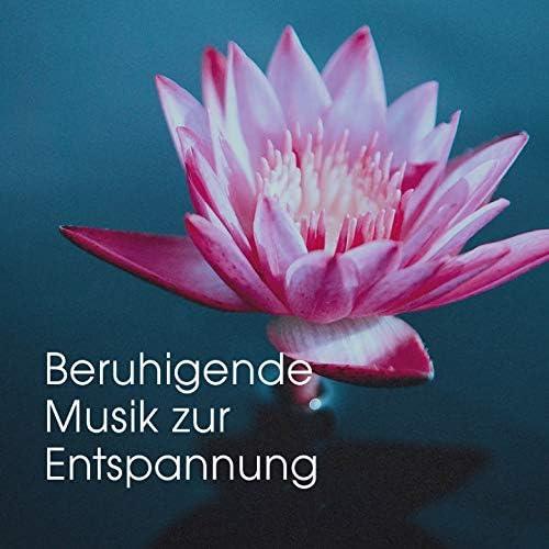 Schlaflieder Player, Studying Music, Entspannen mit Musik