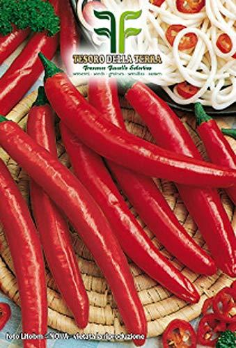 300 c.ca pittige cayennepeperzaden - capsicum annuum in originele verpakking gemaakt in italië - hete pepers