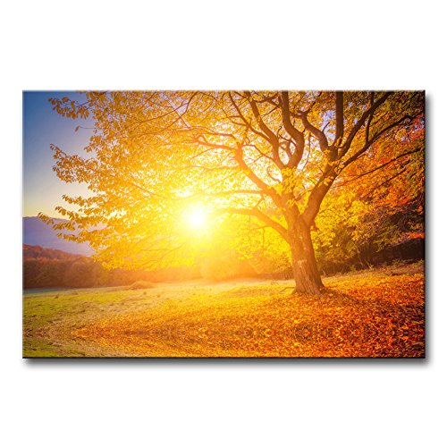 Tree Home Decor Majestic Morning Canvas Wall Art Print