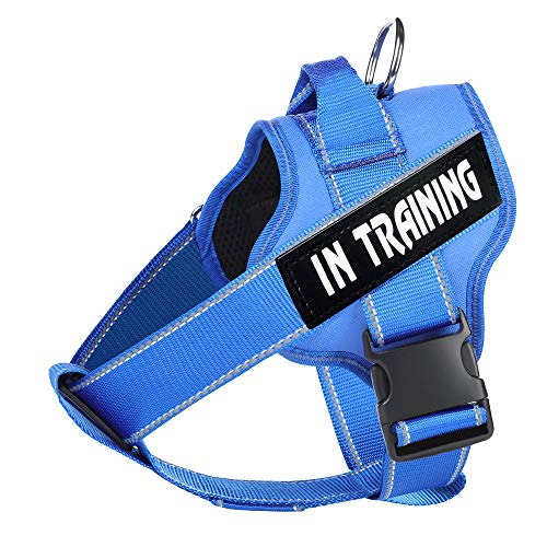 WOCUME Dog Harness No Pull Pet Vest Harness Fixed Adjustable Training Vest with Handle, Dog Vest 3M Reflective Walking Harness for Large Dogs Easy Control Harness(XL,Blue)
