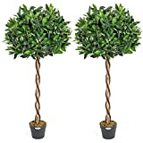 <span class='highlight'><span class='highlight'>CHRISTOW</span></span> Artificial Bay Tree In Pot, Large 3ft 4ft Tall Indoor Outdoor Garden Topiary Ball, Twisted Wooden Trunk, Realistic Lush Green Leaves, Home Office Restaurant, (4ft, 2 pack)
