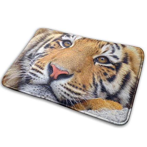 Non-Slip Backing Mat Throw Rug for Kitchen Doormat Rug Bathroom Rugs (16 Inches X 24 Inches) - Tiger King Face