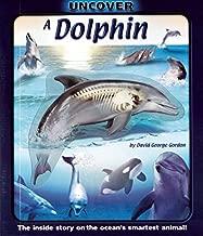 Uncover a Dolphin (Uncover Books)