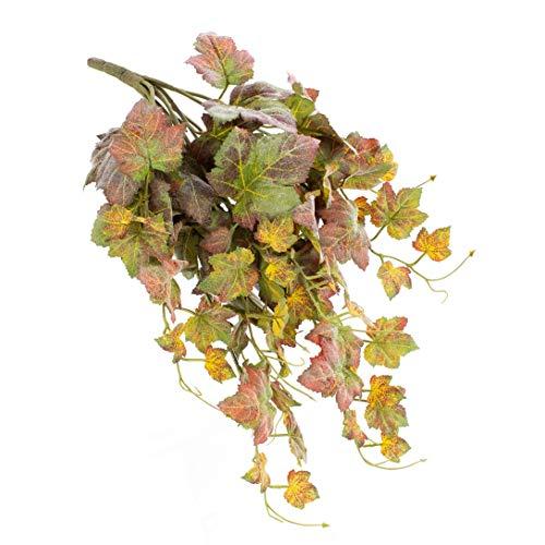 artplants.de Hoja de UVA Noah, 83 Hojas, Verde-Rojo, 60cm -