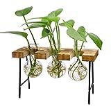 Jarrón de cristal para escritorio, 3 botellas de cristal transparente con banco de escritorio, jarrones hidropónicos, floreros de bellota de vidrio para el hogar, mesa, jardín,decoración de interiores
