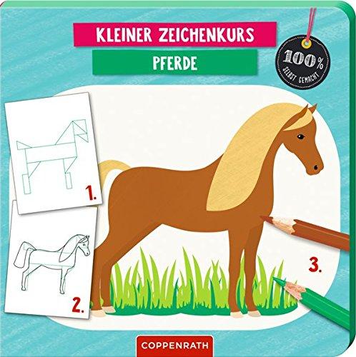 Kleiner Zeichenkurs Pferde (100% selbst gemacht)