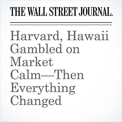 Harvard, Hawaii Gambled on Market Calm—Then Everything Changed copertina