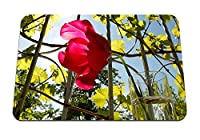 22cmx18cm マウスパッド (太陽の空のガラスを流れるチューリップの花) パターンカスタムの マウスパッド