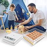 KKTECT Incubatrice per uova 36 uova Trasformazione automatica delle uova trasparente Display a LED digitale Macchina per il controllo delle uova per uso domestico della famiglia delle anatre dei polli