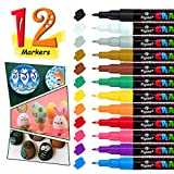 Acrylic Paint Pens-12 Colors Premium Marker Pens, Permanent Water-Based Waterproof Markers with 0.7mm