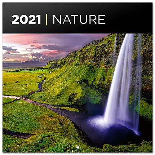 Grupo Erik - Calendario de pared 2021 Nature, 30x30 cm (CP21045)