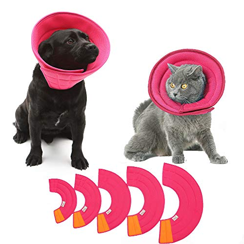 HanryDong Hundekegel, atmungsaktiv, für kleine und mittelgroße Hunde, Katzen, weich, bequem, verstellbares Mesh-Halsband, einfaches Trinken, Fressen, Schlafen, Haustier-Erholung, weiche Kanten