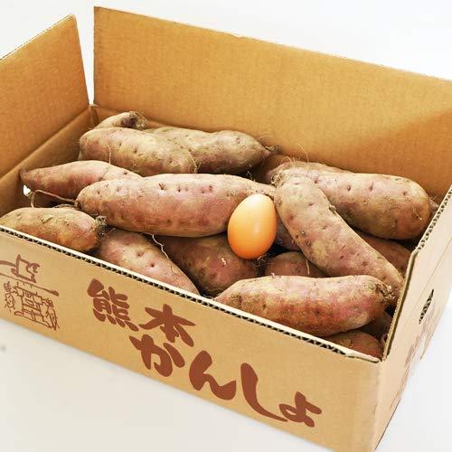 産地直送 土つきさつまいも「紅はるか」(熊本県産)10kg