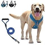 Arnes Perro Arnés Perro Grande,2021 Arnés Reflectante Ajustable para Perros para Perros Medianos con Una Correa de Perro de 1.5m para Trabajo Pesado Gratis(Azul, 2XL)