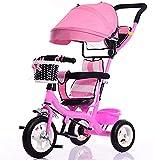 Pequeño cochecito de tres ruedas/bicicleta de interior y al aire libre de los niños con el pie toldo inflable,Pink