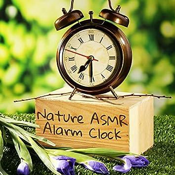 Nature ASMR Alarm Clock
