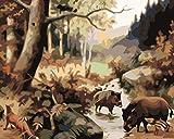 FGHJSF Pintura por Números Cerdo Animal Negro DIY Pintura al óleo con Pinceles y Pinturas para Adultos Niños Principiantes Decoración del Hogar Y Regalo - 40 x 50 cm (Sin Marco)