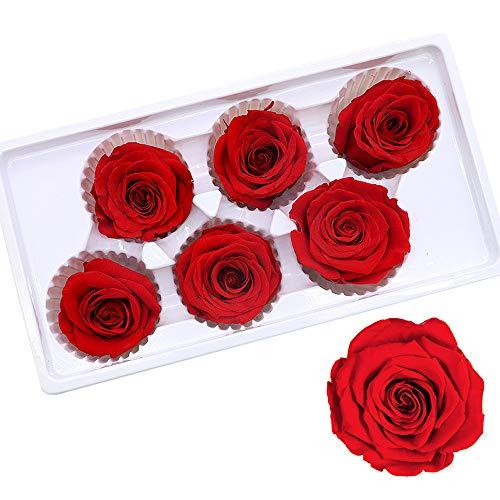 Gobesty Ewige Rosen Box, 6 Stück Rosen Die Ewig Halten Echte Rosen in Box haltbar für Valentinstag/Muttertag/Geburtstag/Hochzeitstag/Weihnachten/Jahrestag(Rechteckige Schwarze Box, Rot Rose)