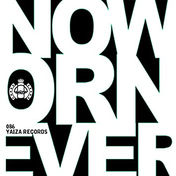 Now Or Never EP