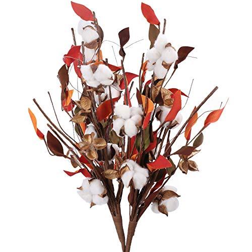 HUAESIN 2pcs Fiori Secchi Naturali Cotoni Composizione Fiori Secchi per Decorazioni Fiori di Cotone Naturali per Inverno Bouquet Fiori Secchi per Casa Soggiorno Cucina Rosso