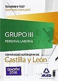 Grupo III Personal Laboral de la Junta de Castilla y León. Temario y test materias comunes