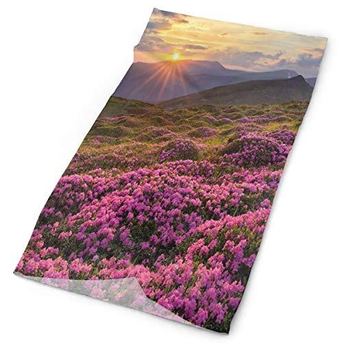 GUUi Headwear Headband Head Scarf Wrap Sweatband,Flower Meadow on Mountain Valley with Horizon Sky Surreal Mother Earth Beauty Image,Sport Headscarves for Men Women