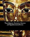 Tutankhamen_ Amenism, Atenism and Egyptian Monotheism illustrated (English Edition)