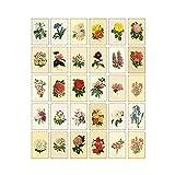 Zhi Jin - Juego de 30 tarjetas postales, diseño de flores vintage, color blanco