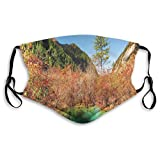 Idyllic Fall Landscape with A Creek Among The Forest in National Park Valley Art,Mouth Cover for Women,Face Mask Reusable Washable Cloth for Men