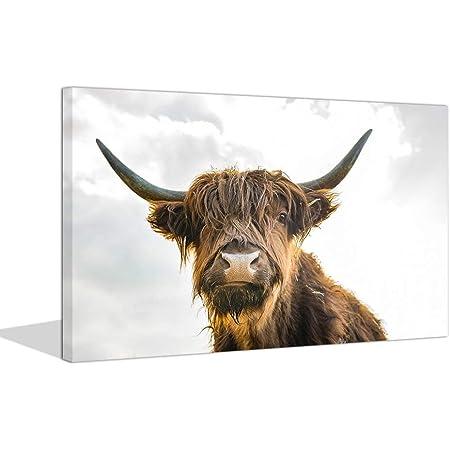 Hairy Scottish Highlanders Wall Art Highlanders Wall Decor Nature Wall Art Winter Nature Wall Art Print Cow Wall Decor Home Wall Art Prints