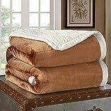 YJJSL Manta de Franela Textiles para el hogar Otoño e Invierno Engrosamiento Cálido sofá/Dormitorio Manta de Siesta (Size : 200cmX230cm)