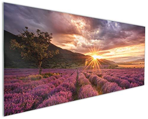 Wallario Küchenrückwand aus Glas, in Premium Qualität, Motiv: Lavendelfeld bei Sonnenuntergang - Sonnenstrahlen | Spritzschutz | abwischbar | pflegeleicht