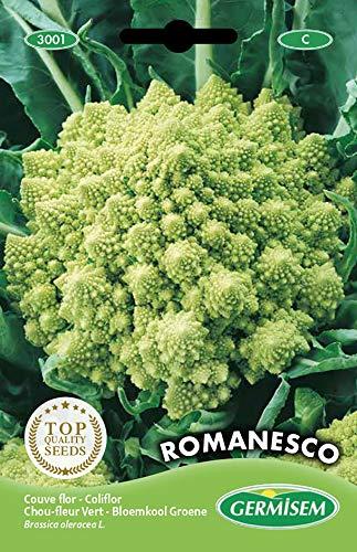 Germisem Romanesco Semi di Cavolfiore 2 g