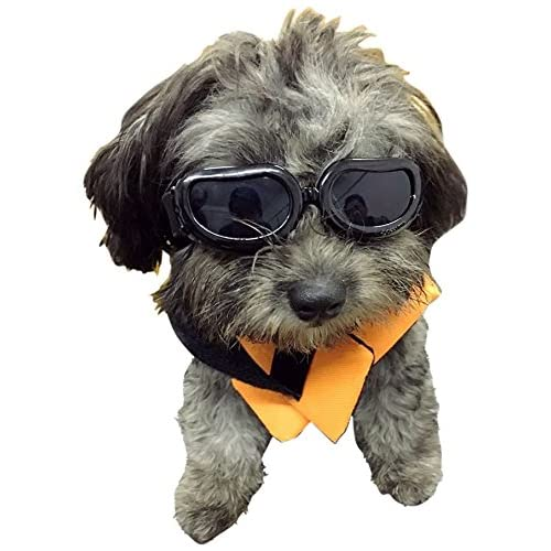 7e92c38f27 Enjoying Dog Goggles - Small Dog Sunglasses Waterproof Windproof UV  Protection for Doggy Puppy Cat