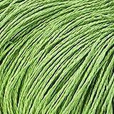YEZINB 100 g/Lote de Hilo orgánico para Tejer Rafia Hilo de Cuerda de Paja Hilo deGanchillo para Sombreros Hechos a Mano cestas artesanías, Verde