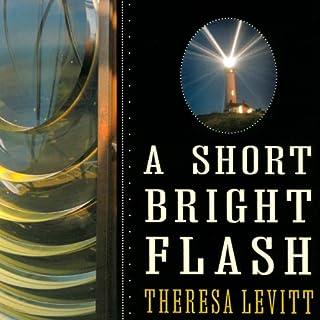 A Short Bright Flash cover art