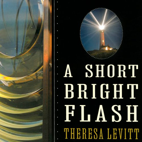 A Short Bright Flash cover art