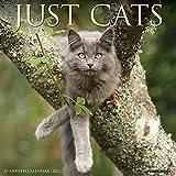 Just Cats 2022 Wall Calendar