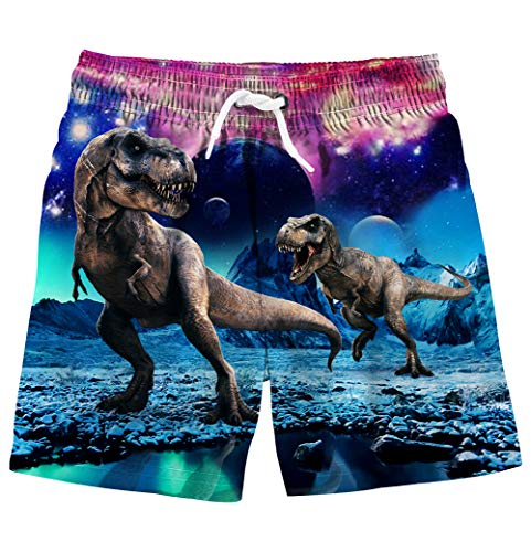 uideazone Kid Little Boys Swim Trunks 3D Dinosaur Printed Quick Dry Board Shorts with Drawstring