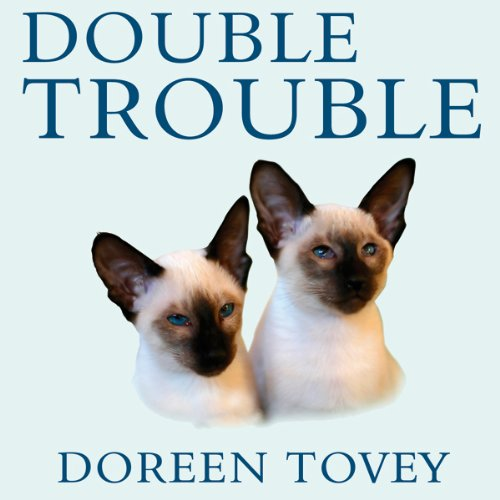 Double Trouble audiobook cover art