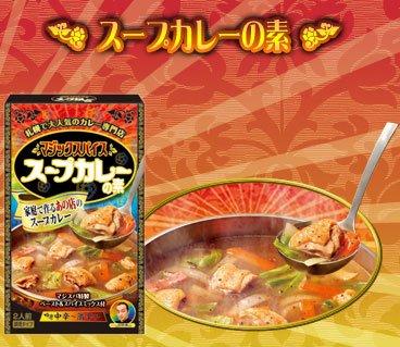北海道スープカレー マジックスパイス スープカレーの素 2人前 [その他 ] 【常】