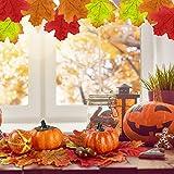Herbst Deko Set, Kesote 120 PCS Kürbis Künstlich Ahornblatt Thanksgiving Tischdeko Erntedankfest Halloween Dekoration Tannenzapfen Eicheln - 4