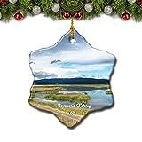 Top 10 Bonners Ornaments